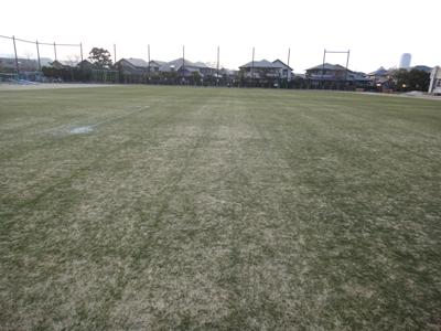 2011.2.3芝生の状況 004