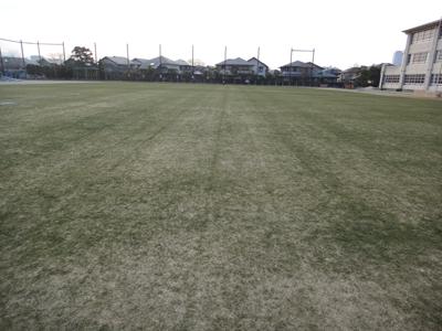 2011.2.3芝生の状況 003