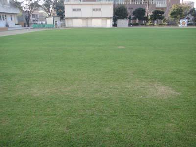 2011.11.26芝生メンテ 006