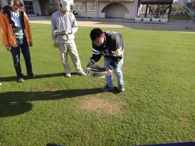 2011.11.26芝生メンテ 020