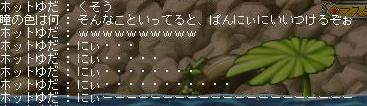 にぃにぃぜみか!