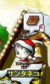サンタ猫のところへ