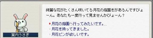 Maple091001_142838.jpg