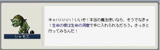Maple091101_230357.jpg