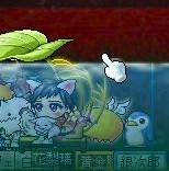 Maple091115_233021.jpg