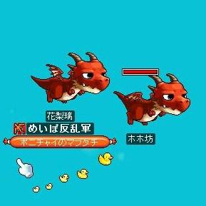 Maple091124_220008.jpg