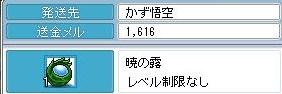 Maple091201_171054.jpg