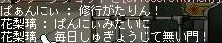 Maple100309_231424.jpg