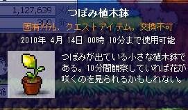 Maple100414_000144.jpg
