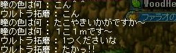 Maple100414_001941.jpg