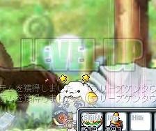 Maple100529_141348.jpg
