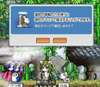 Maple100706_144110.jpg