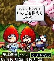Maple100730_005506.jpg