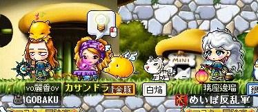 Maple100828_153101.jpg