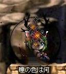 Maple100830_214322.jpg