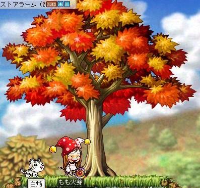 Maple100902_144916.jpg