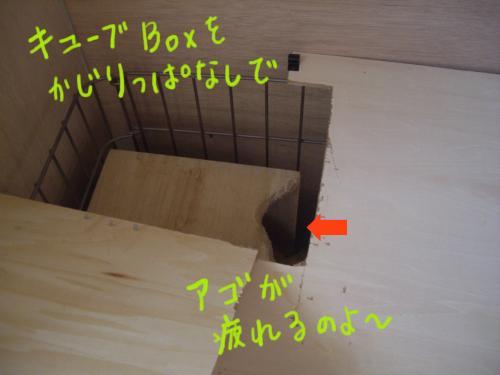 IMGP2041_convert_20090827192201.jpg