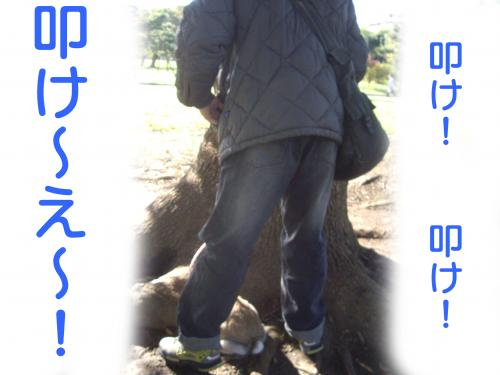 IMGP3238_convert_20091107220412.jpg