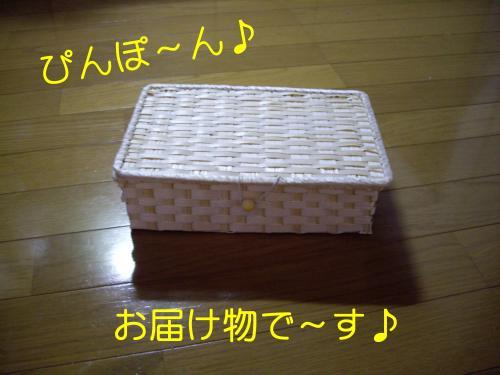 IMGP3372_convert_20091203211726.jpg