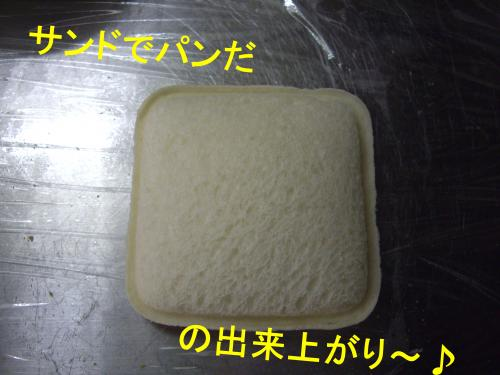 IMGP6351_convert_20090211174937.jpg