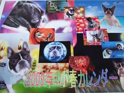2008_0526はなhana1kh1234こはる40059fefrg
