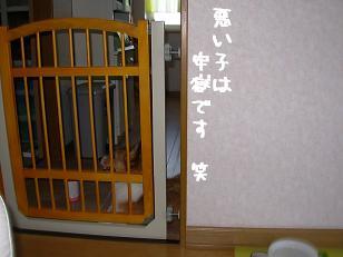 キッチン待機 杏