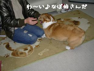 12.14なぽちゃんと杏