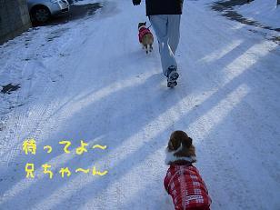 2009元旦散歩