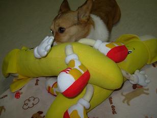 バナナさんと杏