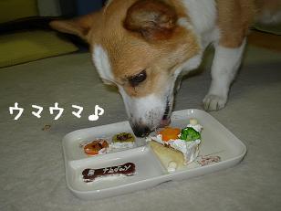 誕生日ケーキ 紋2