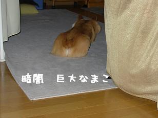 奥部屋 紋次郎