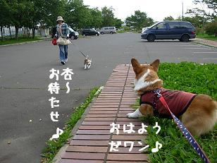 うららと公園散歩
