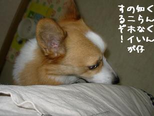 匂いチェック紋次郎