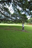 2011_hawaii_1_7.jpg