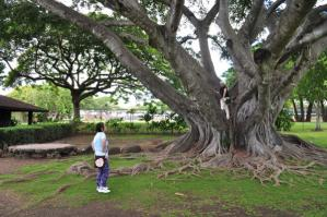 2011_hawaii_1_8.jpg