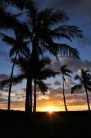 2011_hawaii_2_20.jpg