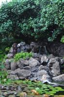 2011_hawaii_2_28.jpg