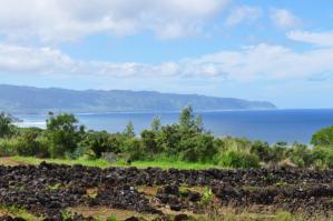 2011_hawaii_3_31.jpg
