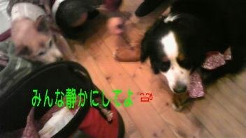 ピーチ姫&ナナ