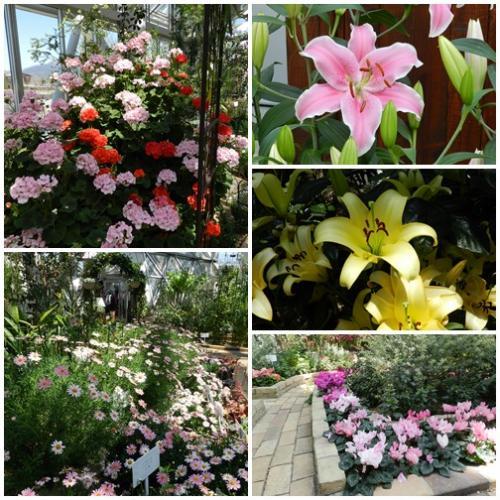 花の都公園4