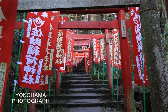 IMG_1724_佐助稲荷神社