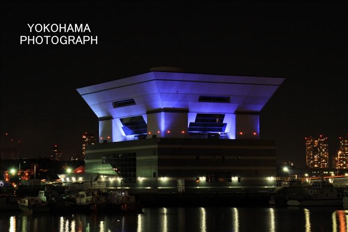 IMG_2064_大桟橋
