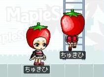Maple100302_035132
