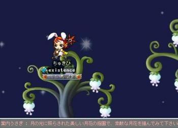 Maple101030_141901
