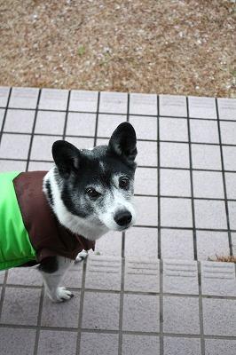 yukiya (2)