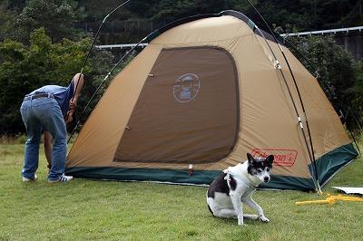 camp1 (3)