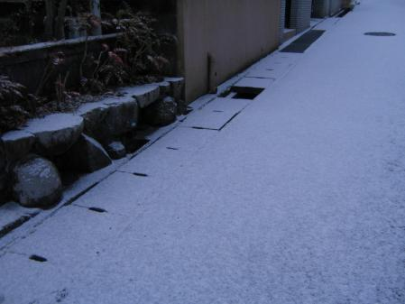 5165春雪