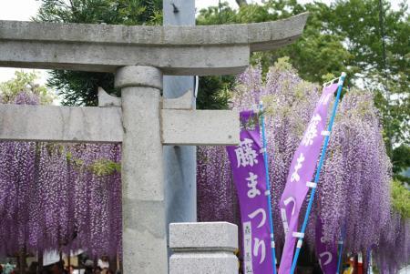 2619大歳神社