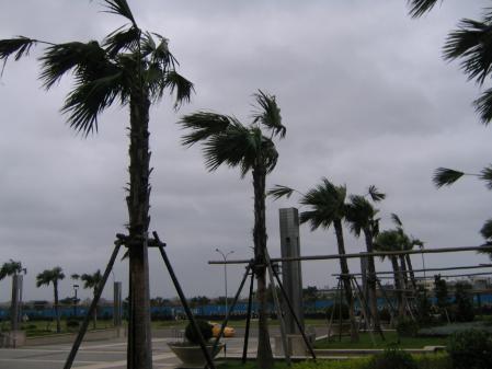 4130台風