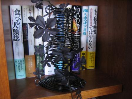 5637黒い花びら